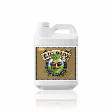 Advanced Nutrients BIG BUD COCO 10L