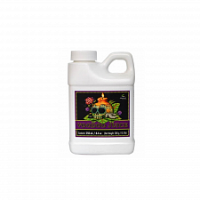Advanced Nutrients Voodoo Juice (250ml)