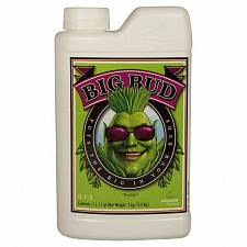 Advanced Nutrients Big Bud (1L)