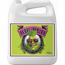 Advanced Nutrients Big Bud 4L